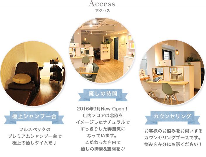 access02_img01