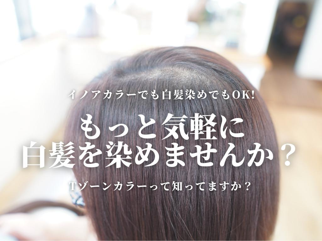イノアカラー リタッチ Tゾーンカラー 部分カラー ポイントカラー オイルカラー 神戸 三宮